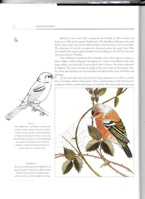 Вышивка гладью птицы схемы для начинающих 88